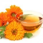 Beneficios y propiedades de la Caléndula: la flor maravilla