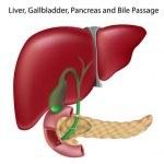 Hierbas medicinales para limpiar hígado (y sanar enfermedades hepáticas)