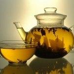 Plantas medicinales digestivas (para combatir nervios estomacales, gases, etc.)