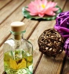 Cómo utilizar las plantas de occidente según la Medicina China