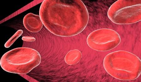 Tratamiento con MTCH de la fiebre inducida por quimioterapia en pacientes con leucemia