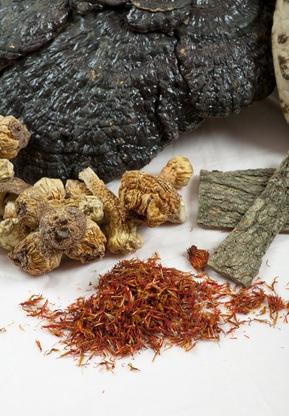 La aplicación clínica de la planta Poria Cocos