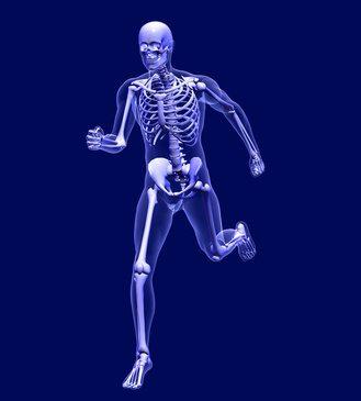 Teoría y práctica de la prevención y principios terapéuticos de la osteoporosis mediante la farmacopea china