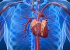 Estudio sobre el tratamiento de la Arteriosclerosis basado en la Teoría de la Desintoxicación
