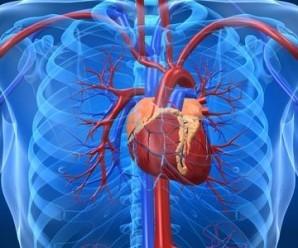 Efecto de Qi Shen Yi Qi Di Wan sobre lesión del miocardio y la función microcirculatoria