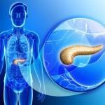 Plantas Medicinales para desintoxicar el Páncreas