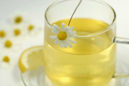 Manzanilla, una antigua y beneficiosa planta medicinal
