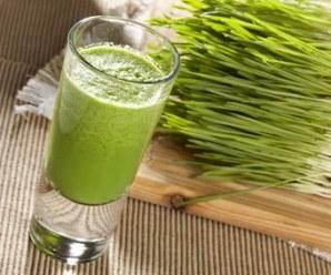 Hierba de Trigo, Buena Nutrición y Otros Beneficios