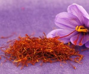 Azafrán, Especia con Propiedades Medicinales