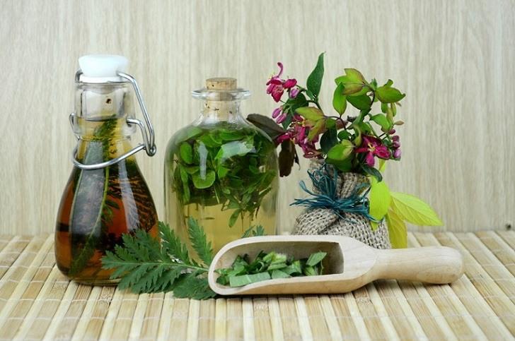 fitoterapia y medicina natural con plantas medicinales
